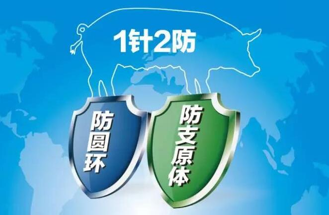 新产品!惠中生物喜获猪圆支二联灭活疫苗新兽药证书