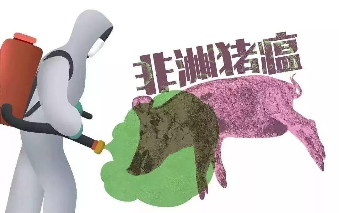 """一文读懂非洲猪瘟防控""""未来格局""""(国务院副总理胡春华讲话全文)"""