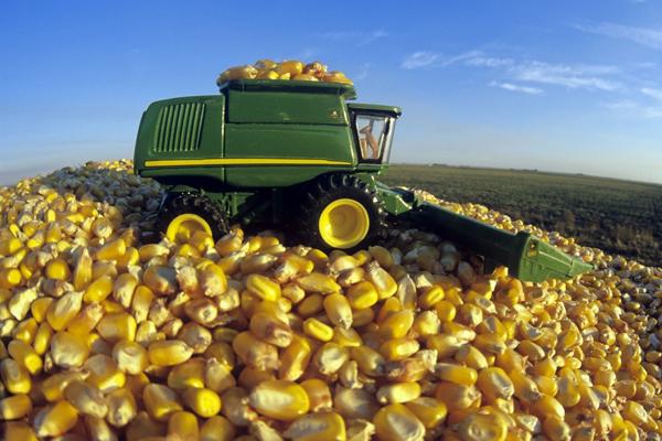 2018年全球饲料总产量11.034亿吨 中国1.879亿吨位列第一