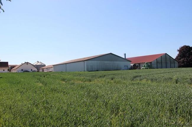 看国外 | 丹麦农民示范低排放猪舍是如何建设的