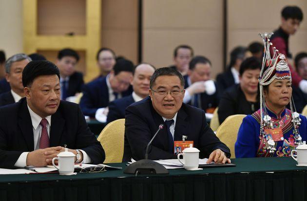 对于乡村振兴和玉米进口配额政策,人大代表林印孙表达了哪些观点?