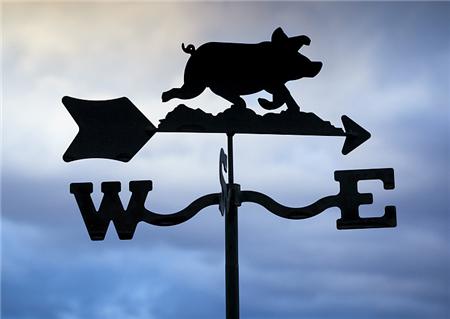市场观察 | 猪企纷纷加大投资,生猪养殖超级周期即将到来?