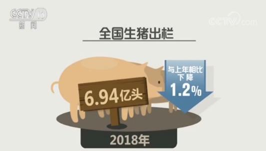 央视最新报道猪价2020年达25元并给出了这样的解释