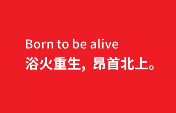 爱猪精选 | 湘江5问:非瘟,何惧