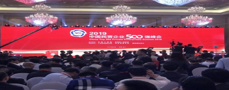爱猪精选 |双胞胎再次荣登中国民企500强,排名升至113位