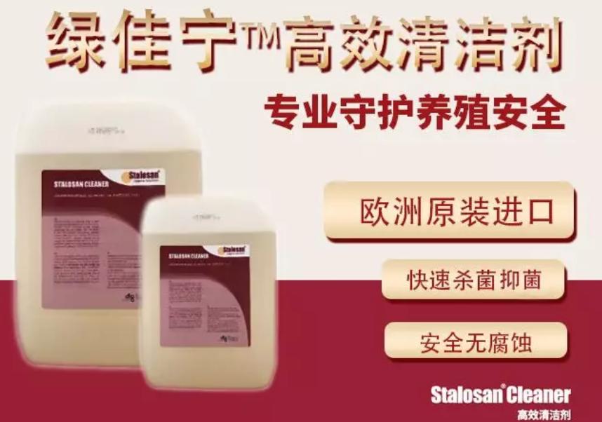 爱猪精选|绿佳宁高效清洁剂,欧洲原装进口专业守护养殖安全