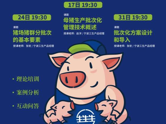 爱猪精选 | 直播看三生  张宏:猪场猪群分批次的基本要素