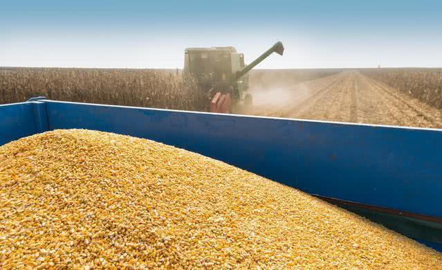 综合报道 | 中国增加美国进口农作物数量,六月仍是饲料消费淡季!