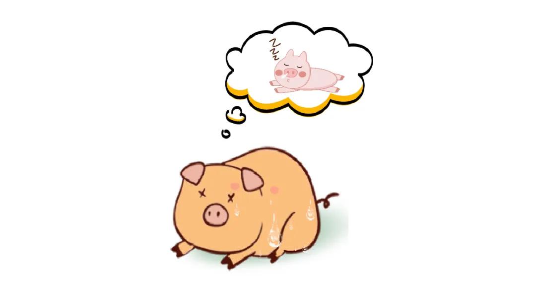 爱猪精选 | 我热的难受,想冲凉了……