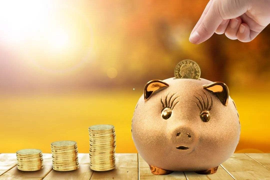 综合报道 | 生猪期货将为中小规模养殖企业提供风险平抑工具