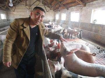 农业农村部:养猪户比年初增加228万户