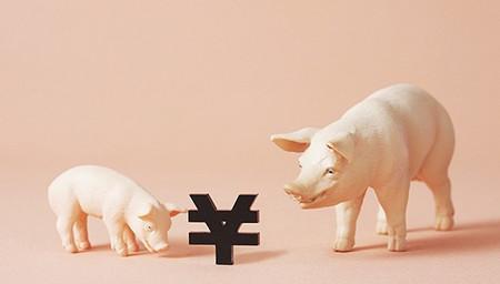 """综合报道丨部分地区猪价已降至""""1""""字头 后市仍存下滑空间"""