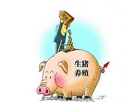 2017年猪市供求变化 养殖总成本你知道多少?