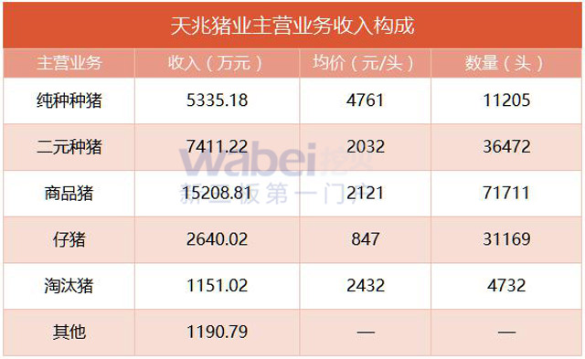 天兆猪业:去年净赚1.3亿,平均每天卖出425头猪