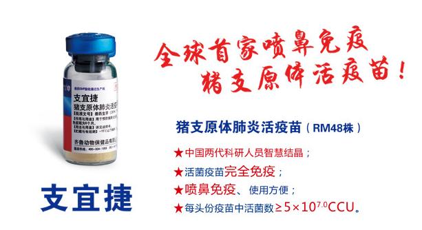 支宜捷——全球首家喷鼻免疫猪支原体活疫苗