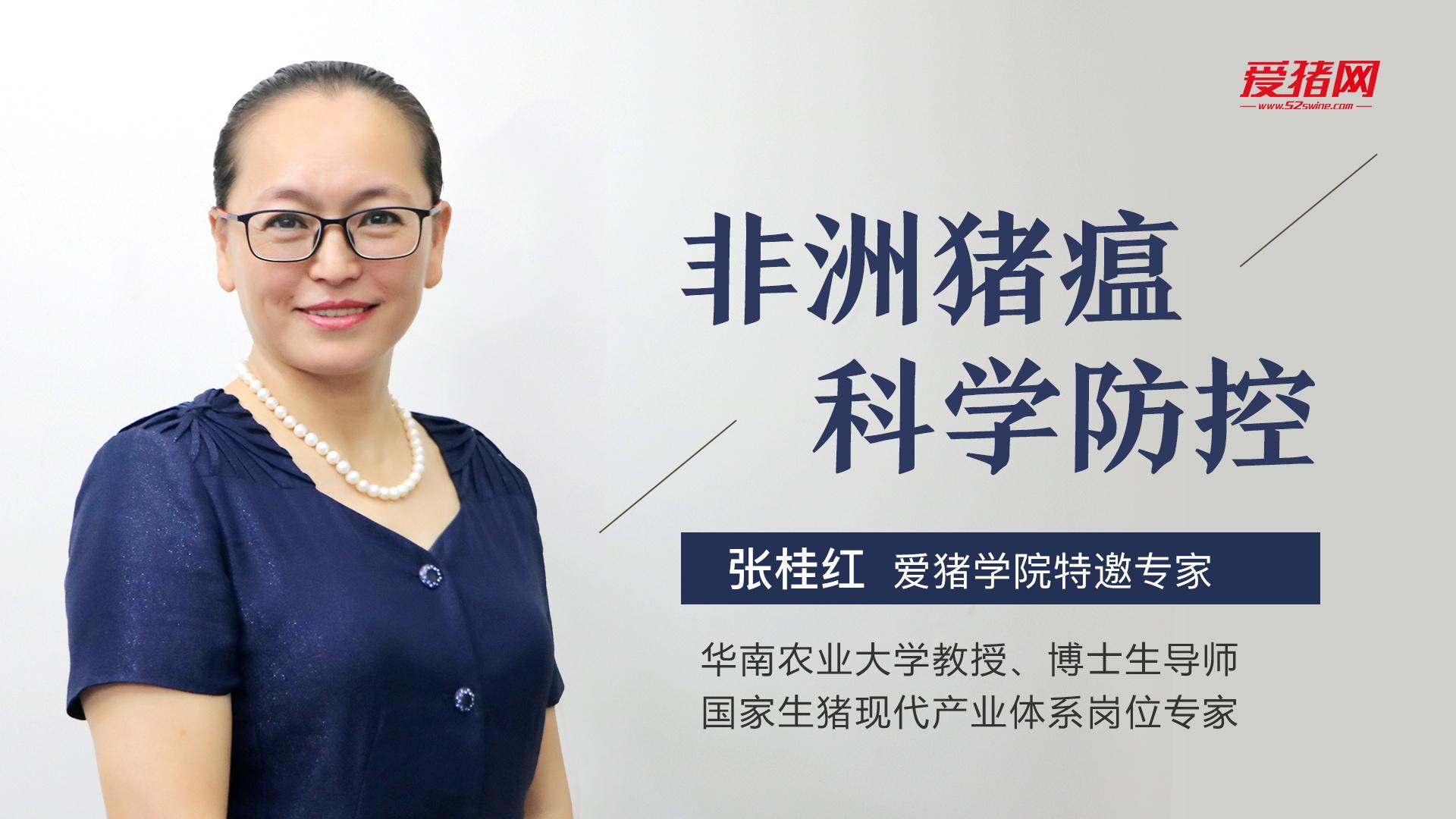 专家讲坛 | 张桂红:非洲猪瘟科学防控(课程版)