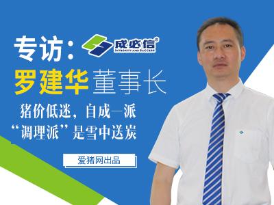 """专访罗建华董事长:猪价低迷,自成一派""""调理派""""是雪中送炭"""