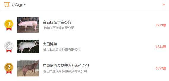 zhongzhu.jpg