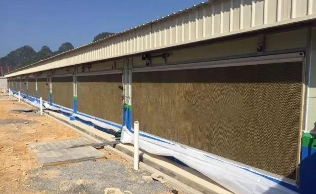 搭凉棚遮阴,加强屋顶隔热;猪舍内部可以采用风机水帘和空调降温,对于