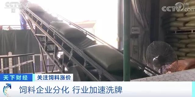 新闻5.webp.jpg